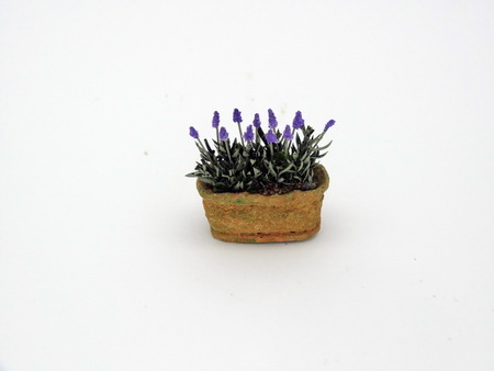 Handmade 12th/1inch scale English Lavender in weathered trough.